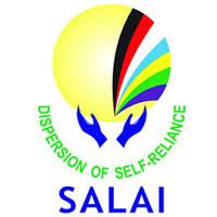 Salai Construction logo